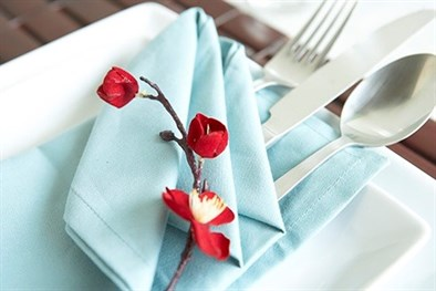 Five Creative Napkin Folding Ideas 2