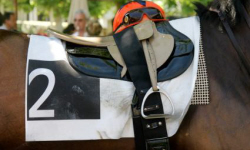 Ascot Racing Picture 250 x 150.jpg